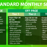 Standard Monthly SEO Package